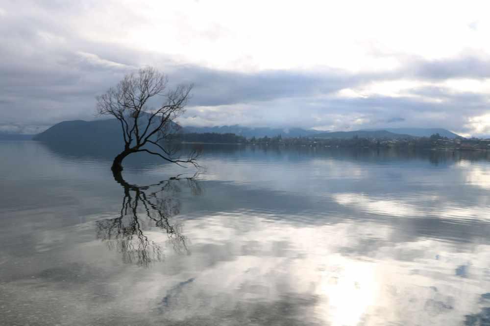 Día 7 - Lago Wanaka